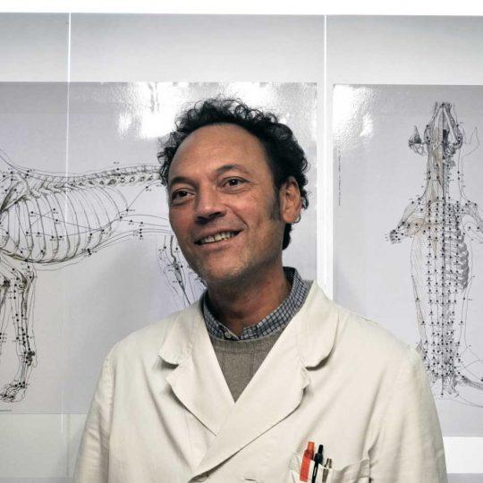 http://www.veterinariocampagnalupia.it/wp-content/uploads/2016/12/Piero-Bortolami-Veterinario-540x540.jpg